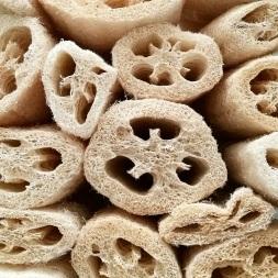 craftiviti loofah luffa sponges